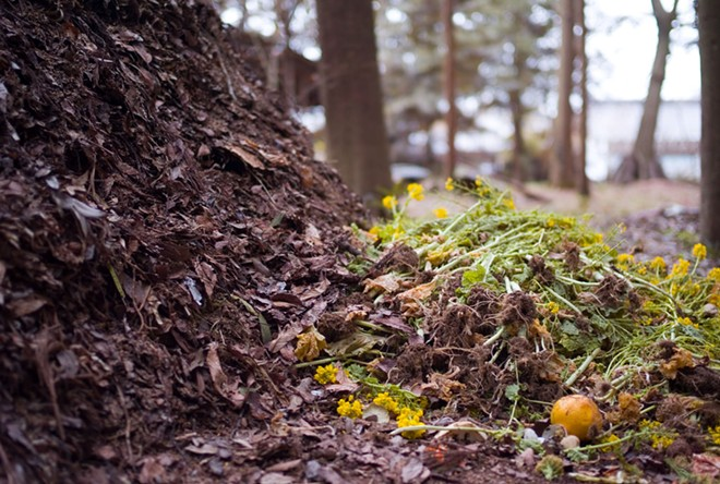 Food composting is familiar for many in Washington, where human composting could soon become an after-death option. - JOI ITO PHOTO, FLICKR
