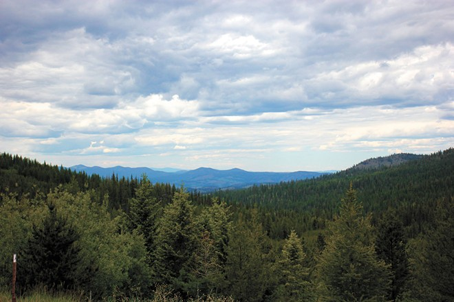 A viewpoint overlooking the Colville National Forest in Ferry County. - QUINN WELSCH PHOTO