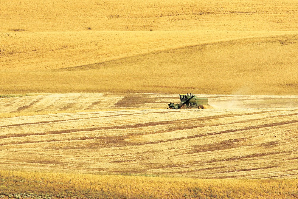China is Washington state's third largest customer of agricultural products. - YOUNG KWAK PHOTO