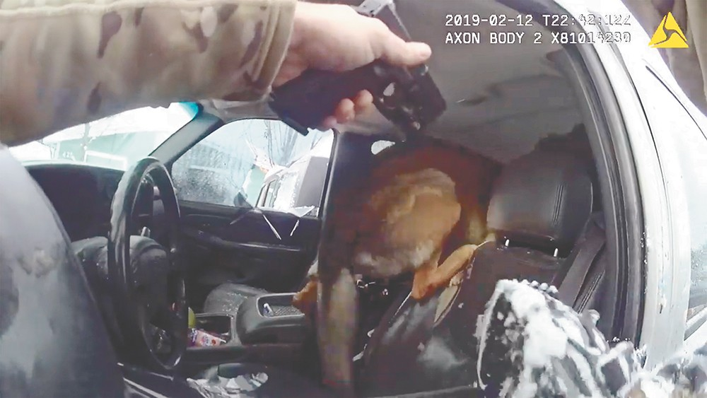 A screenshot of a controversial arrest in February involving Officer Dan Lesser and a Spokane Police dog.