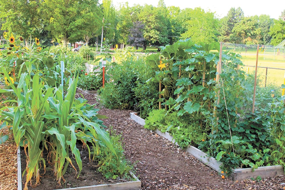 The Grant Park Community Garden in Spokane's South Perry District.