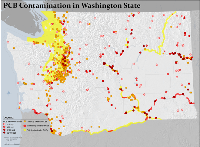 This map shows where PCB contamination is in Washington. The darker a red circle, the higher the level of contamination. Yellow indicates a fish advisory due to PCB contamination levels, and orange squares show PCB cleanup sites. - WASHINGTON STATE ATTORNEY GENERAL'S OFFICE NEWS RELEASE