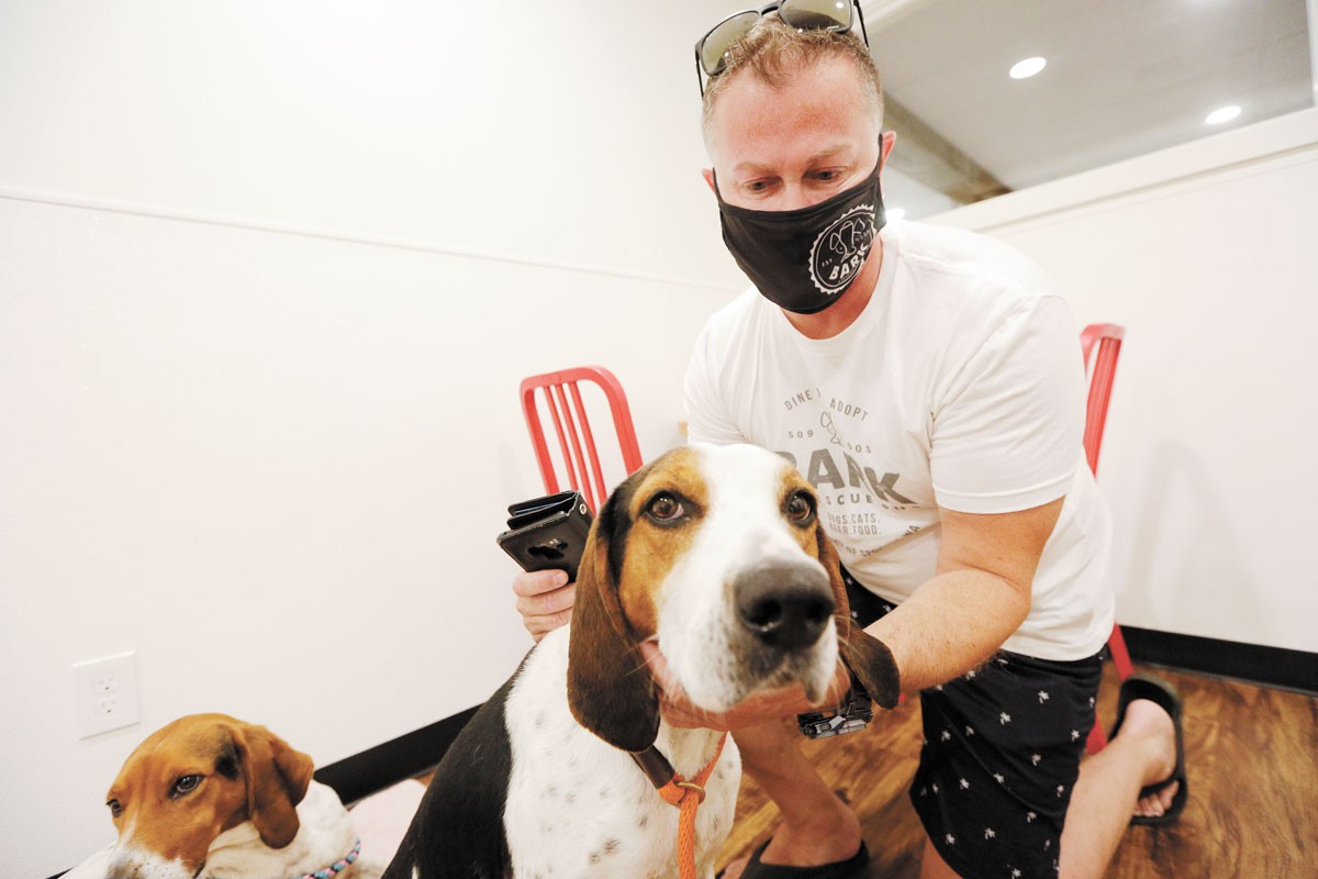 Bark co-owner Josh Wade pets Domino, a 6-year-old hound mix. - YOUNG KWAK PHOTO