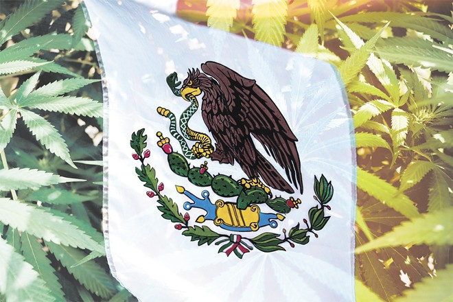 On Nov. 19, Mexico's Senate voted 82 to 18 to legalize recreational cannabis and open a regulated market in the country.
