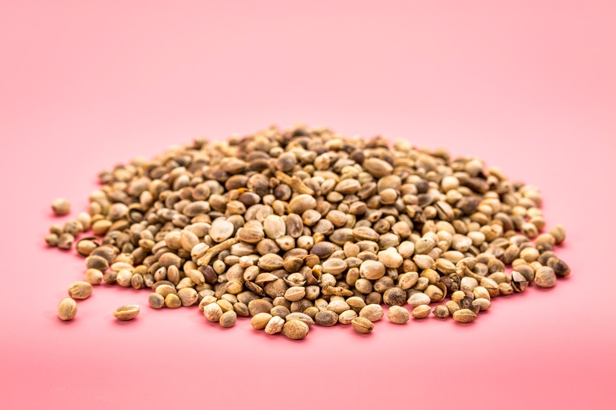 Hemp seeds are a complete protein source and won't get you high.