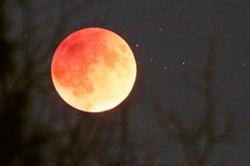 Sunday night's super moon lunar eclipse, aka super blood moon. - YOUNG KWAK