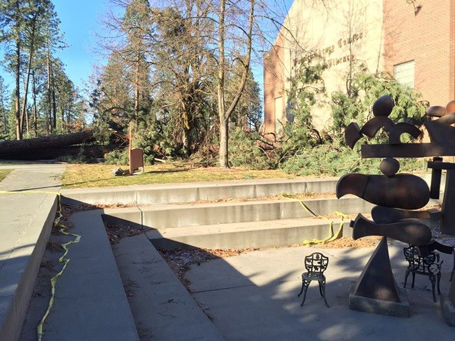 Harriet Cheney Cowles Memorial Library was struck by a falling pine as well. - MAX CARTER