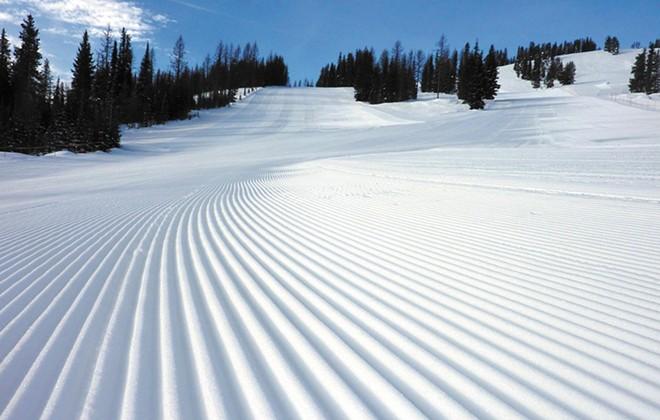 snowlander3-1-cc41978db7af4ab8.jpg