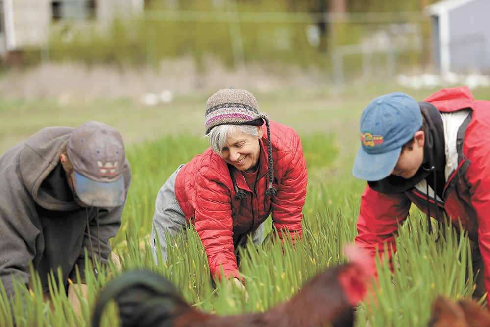 Urban Eden Farm, co-owned by Tarawyn Waters (center), is located minutes from downtown Spokane and grows vegetables sold directly to local customers. - YOUNG KWAK