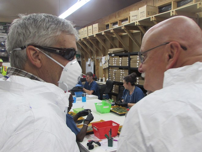 Councilman Sam Wood (left) and Mayor Rod Higgins in a processing room at Grow Op Farms - WILSON CRISCIONE