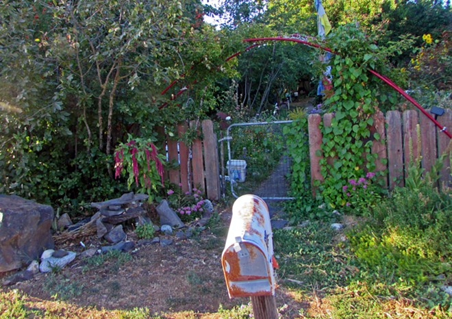 Bridge Ave resident Bea Lackaff's garden spills over her fence. Her attitude toward Kendall Yards has been mostly positive. - DANIEL WALTERS PHOTO