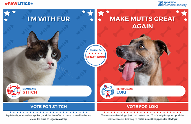 Cat person or dog person? Every vote for your species counts!