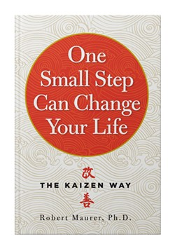Maurer's book, One Small Step Can Change Your Life, was named a Google Top 100 book for 2016.
