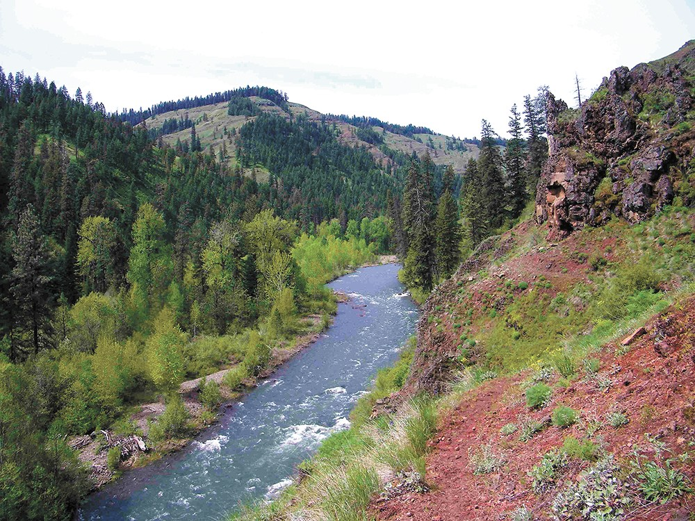 This summer, discover the Wenaha-Tucannon Wilderness, tucked between the Palouse's wheat fields and Walla Walla's vineyards.