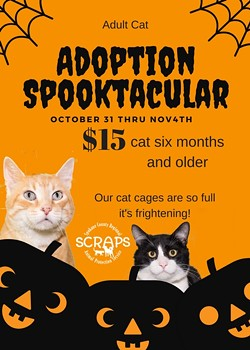 adoption_spooktacular.jpg