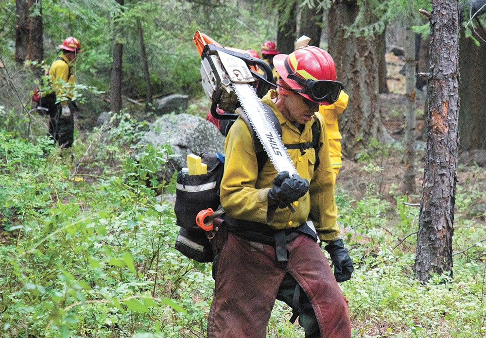The Department of Natural Resources hopes to expand forest-management efforts to prevent more devastating wildfires. - JACOB JONES PHOTO
