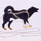 The Inuit Art of Povungnituk