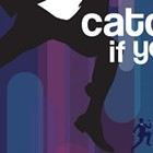Catch Me if You Can, the Musical