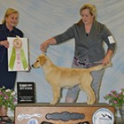 Coeur d'Alene Dog Fanciers All-Breed Show