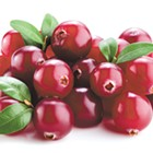 Cranberry Creativity