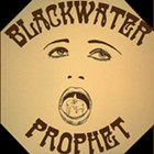 Blackwater Prophet album fundraiser, Von the Baptist, Deer