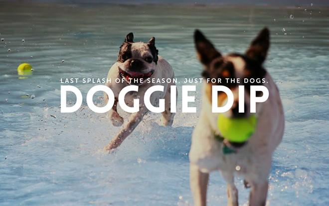 doggie-dip-2017.jpg