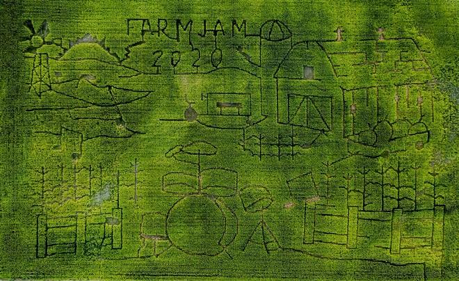 This year's corn maze