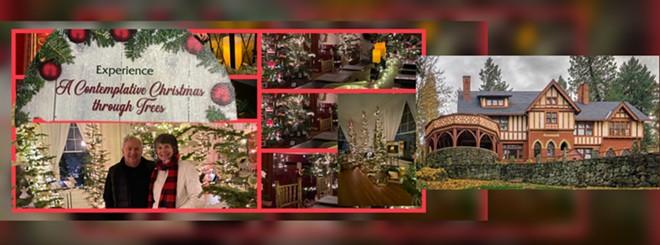 A contemplative Christmas ...through Trees
