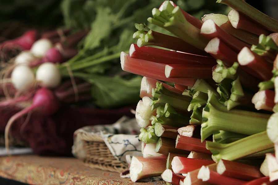 Rhubarb and radishes from Tolstoy Farms. - YOUNG KWAK