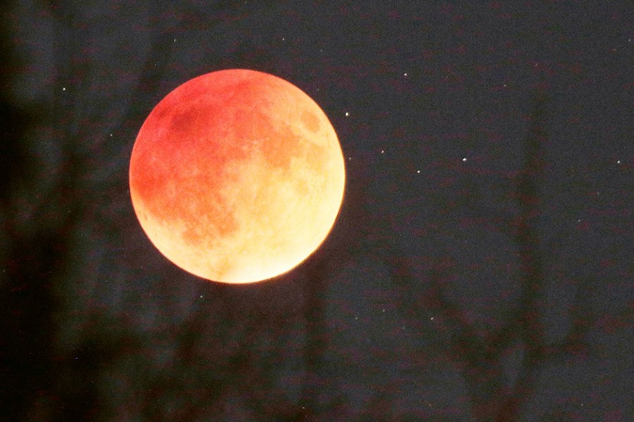 Sunday night's super moon lunar eclipse, aka super blood moon. - YOUNG KWAK