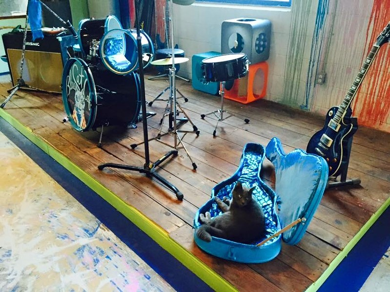 Maybe the cats will have jam sessions at night? - BLUE CAT CAFE FACEBOOK