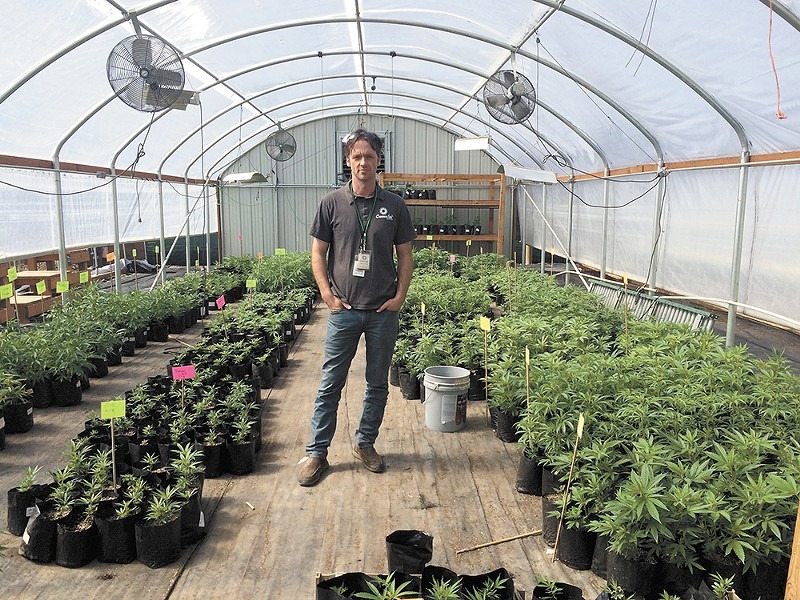 Jeremy Moberg runs one of the largest outdoor pot grows in the state. - MITCH RYALS