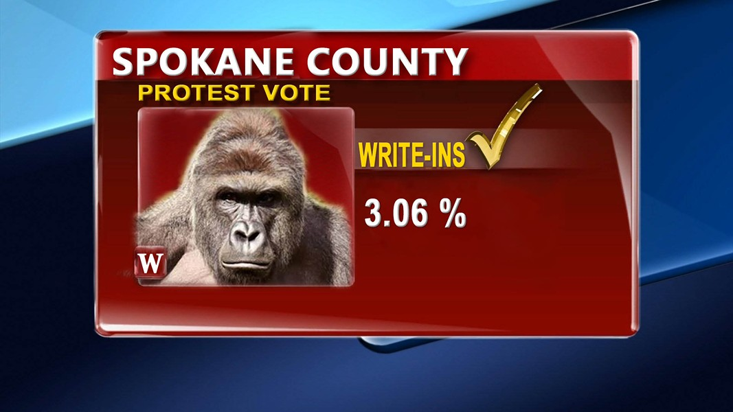 "The ""Justice For Harambe"" party was just one of many official write-in candidates in Washington state. However, individual write-in names are not recorded unless the votes could determine the winner. - DANIEL WALTERS PHOTO ILLUSTRATION"
