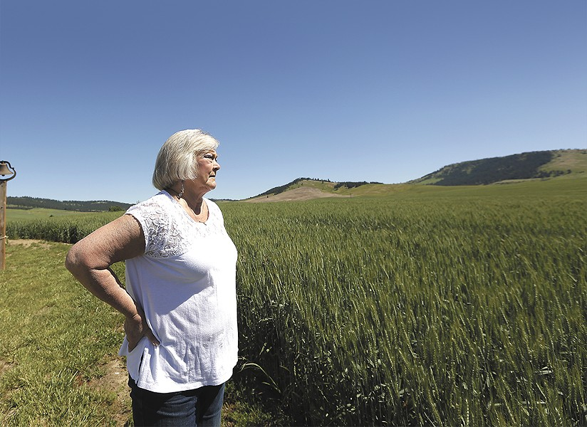 Penney Tee looks over wheat growing on - her land outside of Latah. - YOUNG KWAK