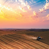 "Drone photography of the Inland Northwest Jared Cocking drives his combine through his Palouse farm. ""That evening the skies were smoky from the many fires in the northwest,"" comments Eric Weitze. Myk Crawford photo"