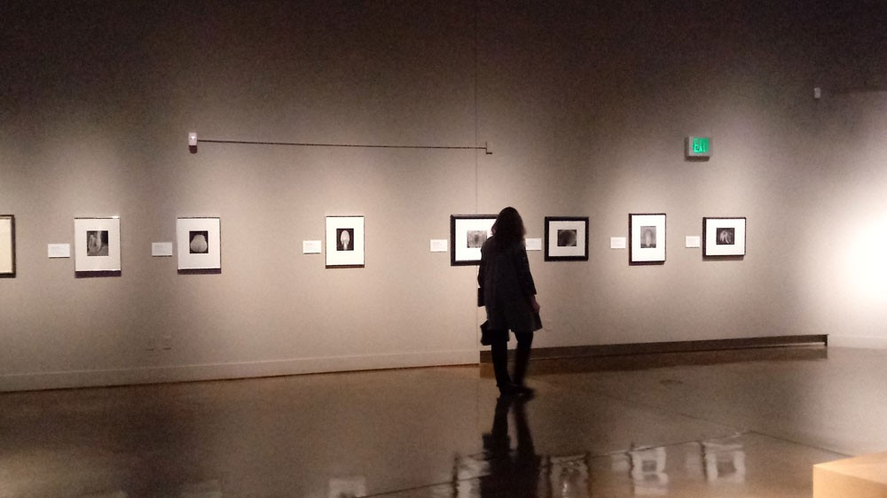 A MAC visitor peruses the Modern Masters: Group f/64 show. - DAN NAILEN PHOTO