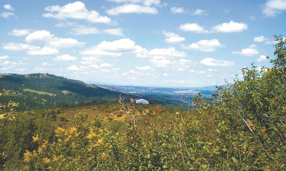 The Iller Creek hike offers spectacular views of the Valley and the Palouse. - CHEY SCOTT