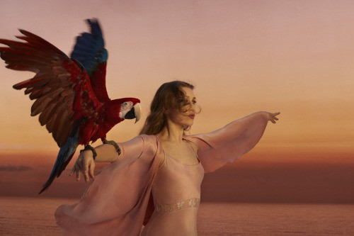 Joanna Newsom is one of Spokane's biggest gets for the year 2016.