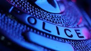 stock.police.badge.jpeg