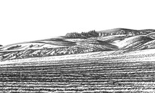 Artist Katherine Nelson creates drawings inspired by the Palouse and its legacy as a wheat community
