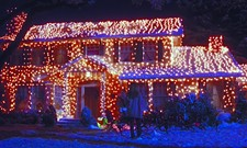 Suds and Cinema: National Lampoon's Christmas Vacation