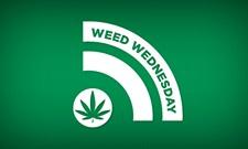 WW: Real talk on marijuana with Spokane Council President Ben Stuckart