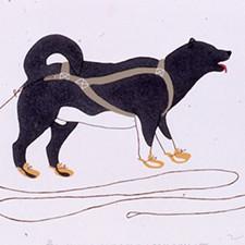 sivuak-dog-sticking-out-tongue-mac-exhibition-spokane.jpg