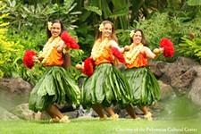 04668518_luau-hula-auana-women.jpg