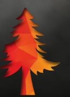 5044a5bd_wildfire.jpg