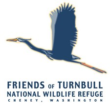 e714e99d_friends-of-turnbull-logo.jpg