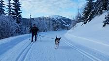 9d0bdc72_skijorclinic_pic.jpg