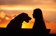 c2240c1e_susnet_woman_dog.jpg
