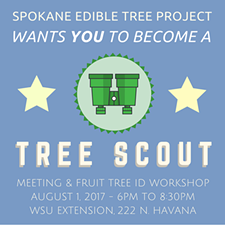 11a10d63_setp-tree-scout-event.png