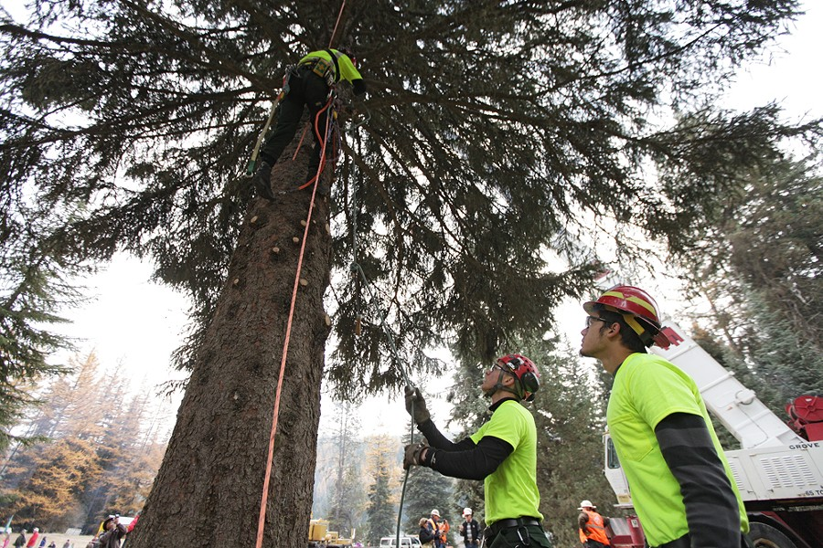 U.S. Forest Service employees Alex Jess, center, and Michael Rude hand Jim Beckwith a saw. - YOUNG KWAK